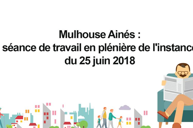 instance-mulhouse-aines-juin-2018.jpg